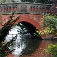 Cannon Hill Park local dog walk in Birmingham, West Midlands - Dog walks in the West Midlands