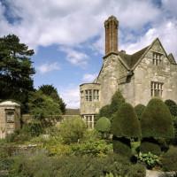 Benthall Hall woodland dog walk, Shropshire - Dog walks in Shropshire