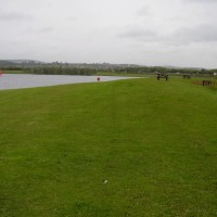 M1 Junction 39 country park dog walk and cafe, Yorkshire - Dog walks in Yorkshire