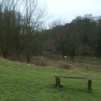 Baggeridge Country Park dog walk, Staffordshire - Dog walks in Staffordshire