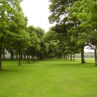M1 Junction 46 dog walk and stately home cafe, Yorkshire - Dog walks in Yorkshire
