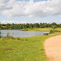 Lakeside Country Park dog walk, Hampshire - Dog walks in Hampshire