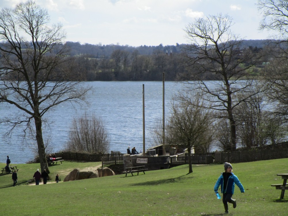 A21 country park and cafe dog walk, East Sussex - Sussex dog-friendly pubs and dog walks.JPG