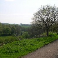 Biddulph dog walk, Staffordshire - Dog walks in Staffordshire