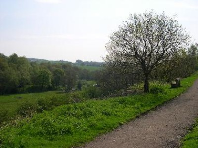 Biddulph dog walk, Staffordshire - Driving with Dogs