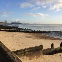Ferry port dog walk and dog-friendly B&B, Essex - Dog walk by the beach before a ferry crossing.jpg