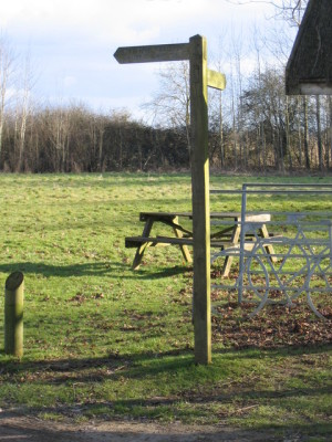 Cotswold Water Park dog walks, Gloucestershire - Driving with Dogs