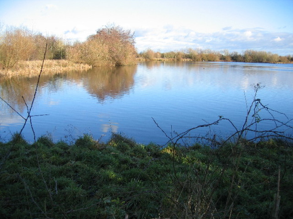 Cotswold Water Park dog walks, Gloucestershire - Dog walks in Gloucestershire