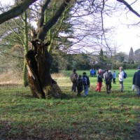 Newhall Valley Country Park dog walk, West Midlands - Dog walks in the West Midlands