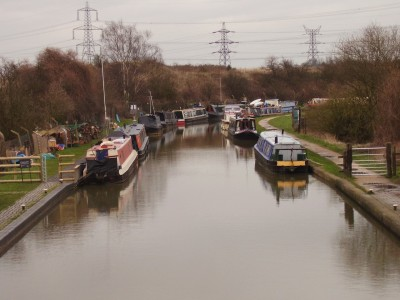 M6 Junction 3 dog walk and dog-friendly heritage pub, West Midlands - Driving with Dogs