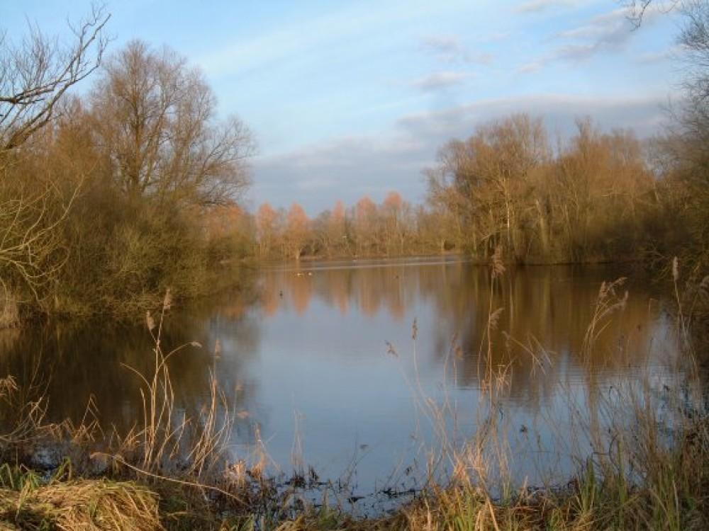 Barnwell Country Park dog walk near Oundle, Cambridgeshire - Dog walks in Cambridgeshire