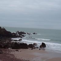 Westdale dog-friendly beach, Pembrokeshire, Wales - Dog walks in Wales