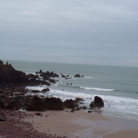 Westdale dog-friendly beach, Pembrokeshire, Wales - Dog walks in Wales