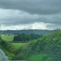 Hopton Wood, Shropshire - Dog walks in Shropshire
