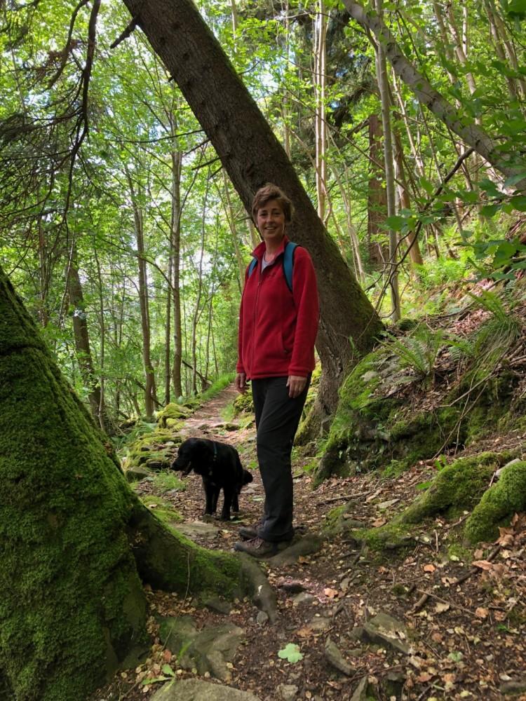 Dog walk near Aberfeldy, Scotland - IMG_9044.jpeg