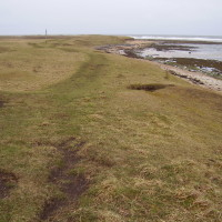 Boulmer dog walk and dog-friendly beach, Northumberland - Dog walks in Northumberland