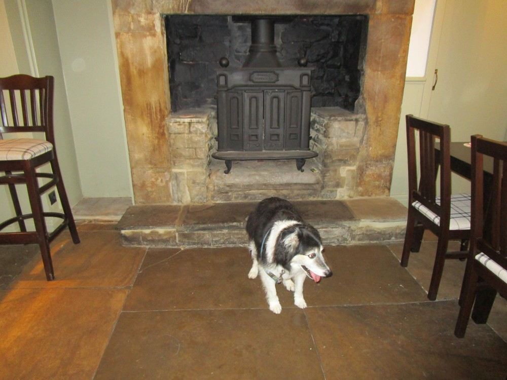 Dalesway dog walks and dog-friendly dining, Yorkshire - Yorkshire dog-friendly pub and dog walk