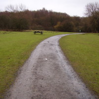 A1 country park dog walk near Bedlington, Northumberland - Dog walks in Northumberland