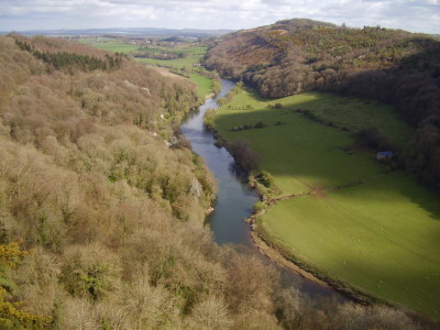 Symonds Yat Rock dog walks, Herefordshire - Driving with Dogs