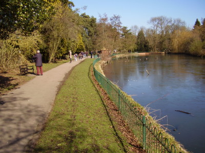 M42 Junction 5 dog walk and cafe near Solihull, West Midlands - Driving with Dogs