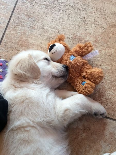 Cilla with baby ted