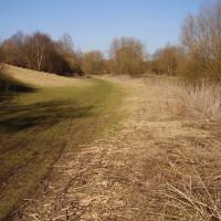 Cole Bank Park local dog walk, West Midlands - Dog walks in the West Midlands