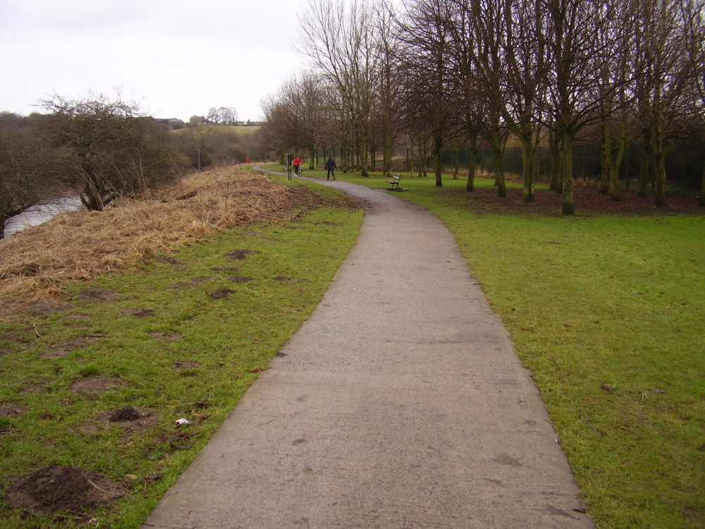 Riverside Park, County Durham - Dog walks in County Durham