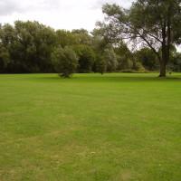 St Neots dog walk, Cambridgeshire - Dog walks in Cambridgeshire