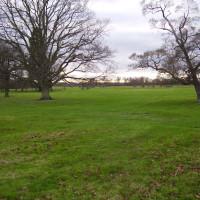 Wimpole Hall dog walks, Cambridgeshire - Dog walks in Cambridgeshire