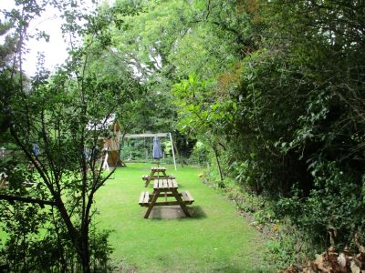 Didcot area dog walk and dog-friendly pub, Oxfordshire - Driving with Dogs