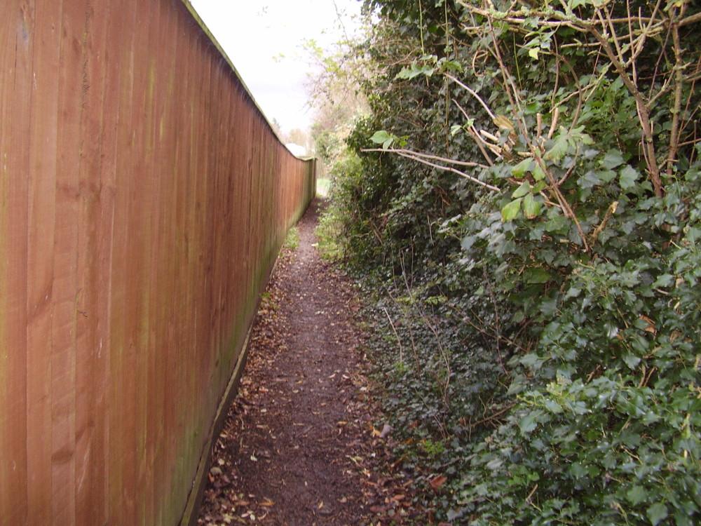 Hardwick dog-friendly pub and dog walk, Cambridgeshire - Dog walks in Cambridgeshire