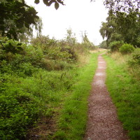 Farnsfield dog walk, Nottinghamshire - Dog walks in Nottinghamshire
