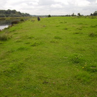 Riverside dog walk and dog-friendly pub, Nottinghamshire - Dog walks in Nottinghamshire