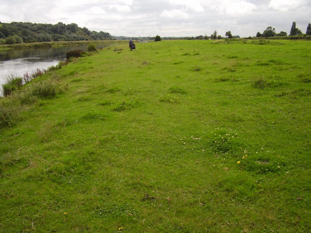 Hoveringham dog walk and dog-friendly pub, Nottinghamshire - Dog walks in Nottinghamshire