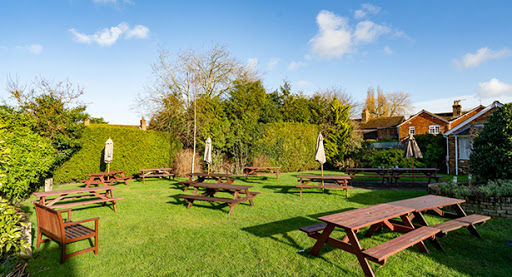 A350 dog-friendly pub and iconic walk, Dorset - dog-friendly dorset pubs and walks.jpg