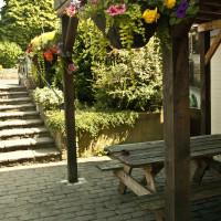 Dog-friendly pub and dog walk near the A303, Somerset - Somerset dog friendly pub and dog walk