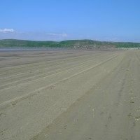 Brean dog-friendly beach, Somerset - Dog walks in Somerset