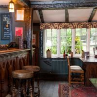 A31 dog-friendly pub and dog walk in the New Forest, Hampshire - Hampshire dog-friendly pub and dog walk