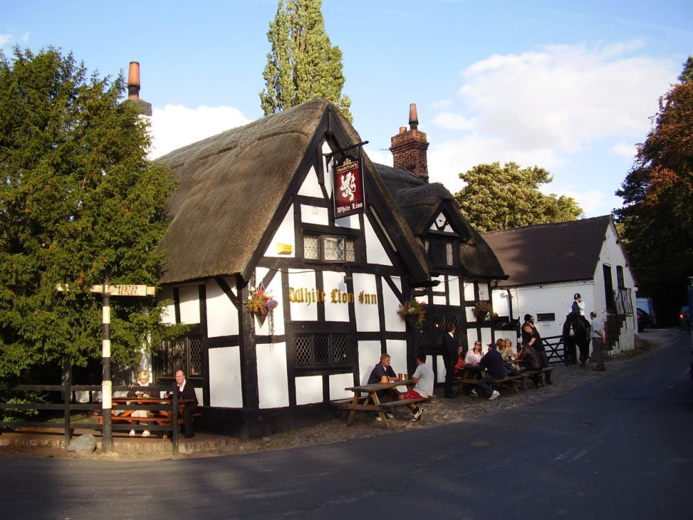 M6 Junction 16 dog walk and dog-friendly heritage pub, Staffordshire - Dog walks in Staffordshire