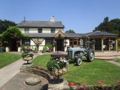 A456 riverside dog walk and pub, Herefordshire - Driving with Dogs