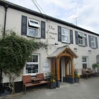 A361 dog-friendly dining pub and dog walk, Devon - Devon dog walk and dog-friendly pub.JPG