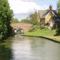 M40 Junction 11 dog-friendly pub and dog walk, Oxfordshire
