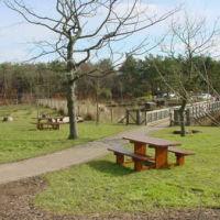Country park dog walk near Cumbernauld, Scotland - Dog walks near the M80.jpg