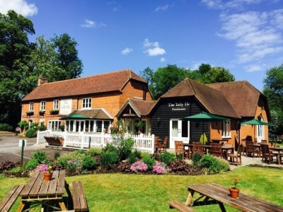A327 dog walk and dog-friendly dining, Hampshire - Driving with Dogs