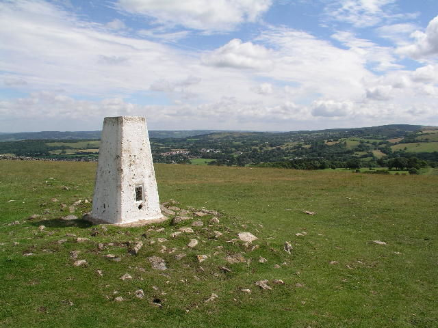 A38 dog walk on the downs, Somerset - Dog walk in the Mendips.jpg