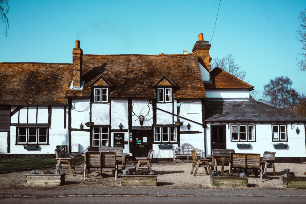 A321 dog friendly pub and dog walk near Henley on Thames, Berkshire - Berkshire dog walk and dog friendly pub