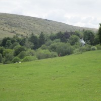 A30 Dartmoor dog-friendly inn with B&B and dog walk, Devon - Devon dog walk and dog-friendly pub.JPG
