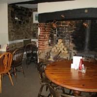 A3066 dog-friendly dining and dog walk, Dorset - IMG_0575.JPG