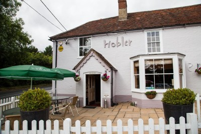 A337 dog walk and dog-friendly pub, Hampshire - Driving with Dogs