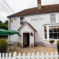 A337 dog walk and dog-friendly pub, Hampshire - Hampshire dog-friendly pub and dog walk
